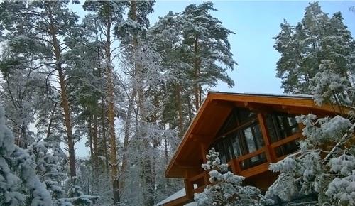 влияние воздействие деревянного дома на здоровье и психику человека