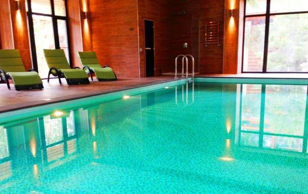 стильные дома с бассейном